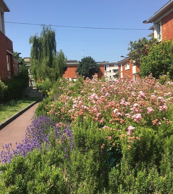 Chasse au trésor à la Cité-jardins de Champigny-sur-Marne