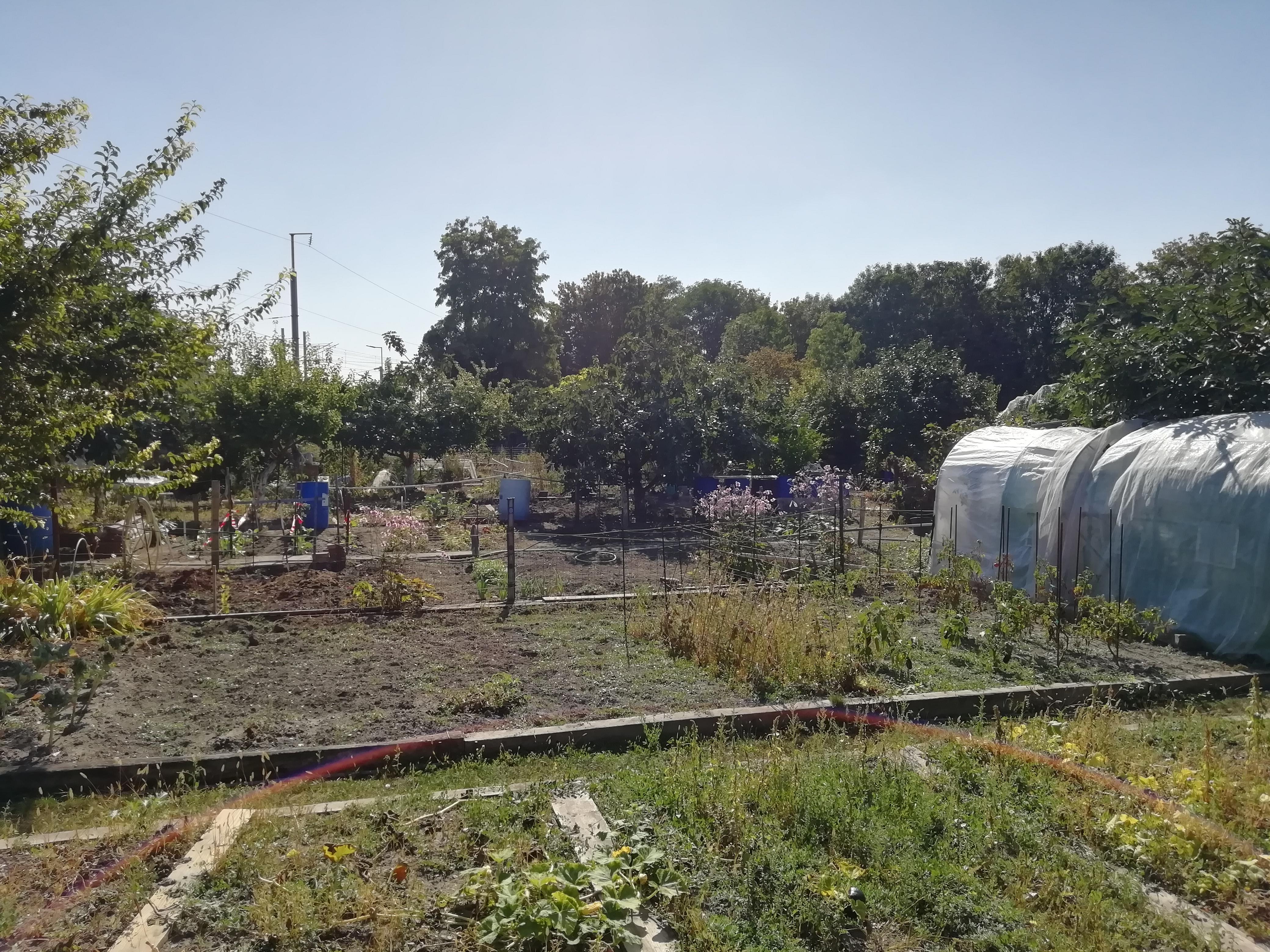 Jardins familiaux, Villetaneuse cité Saint Vincent de Paul